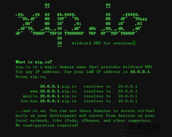 网站测试辅助工具xip.io服务